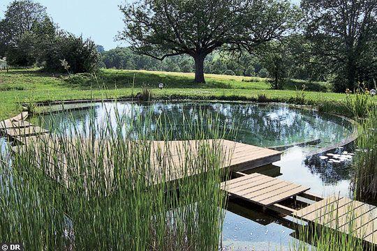 amenagement piscine naturellele paysagiste. Black Bedroom Furniture Sets. Home Design Ideas