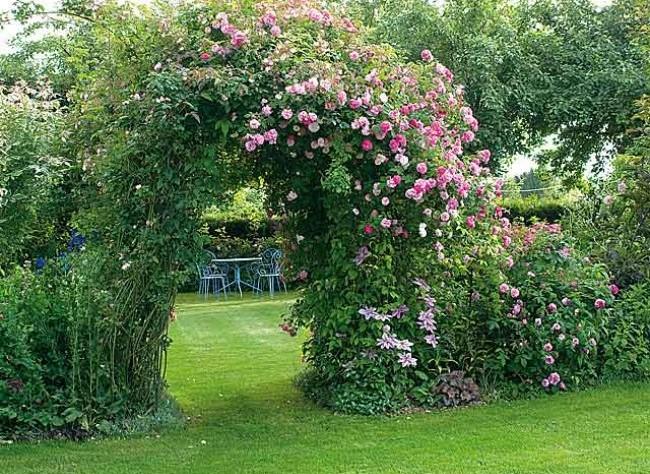 Creer une roseraie dans un petit jardinLe Paysagiste