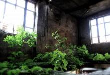 Aménager un jardin d'intérieur pour un espace de détente