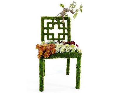 Une chaise plutôt originale couverte de verdure !