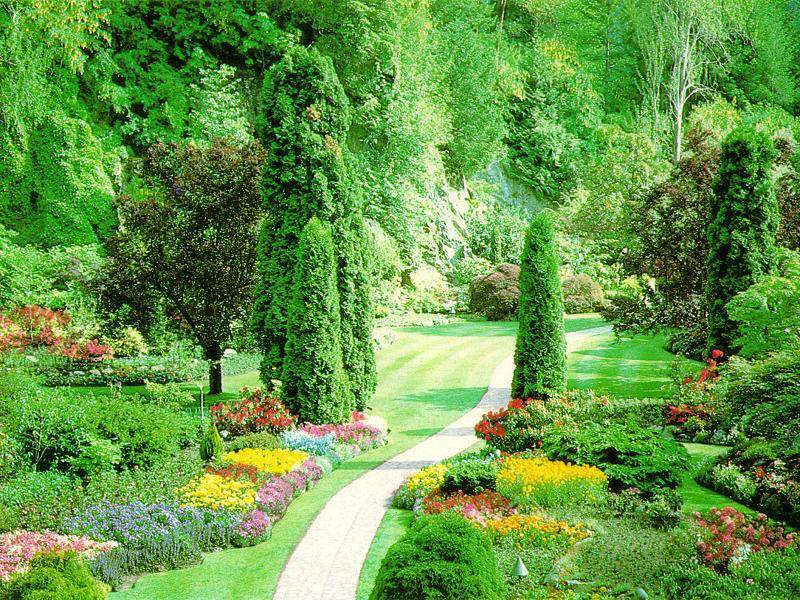 Comment bien am nager son jardin le paysagiste le for Amenagement jardin fleuri