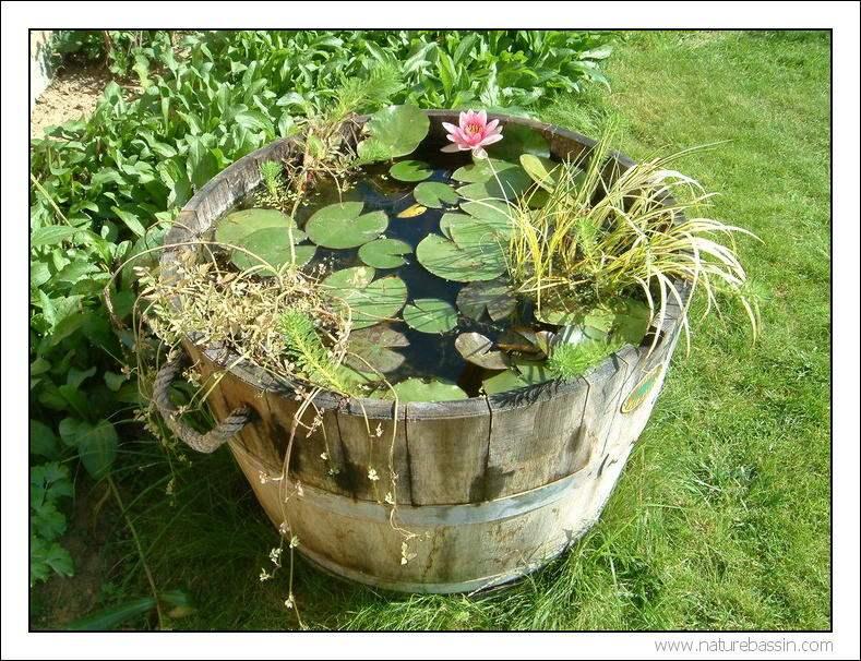 Stunning Bassin De Jardin Tonneau Contemporary
