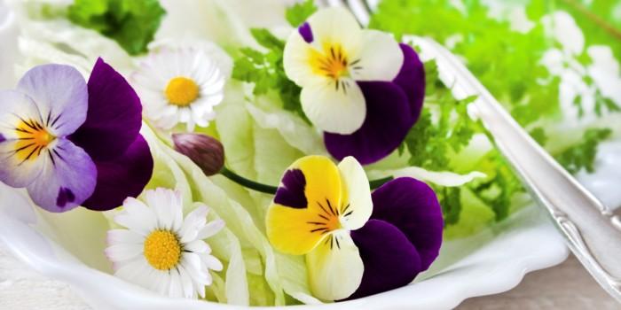 Des fleurs qui se mangent : le jardin dans votre assiette