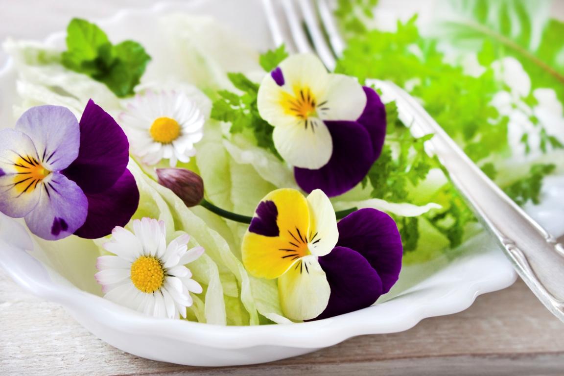 des fleurs qui se mangent le jardin dans votre assiette le paysagiste. Black Bedroom Furniture Sets. Home Design Ideas