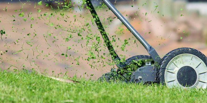 Bien entretenir sa pelouse en 4 étapes