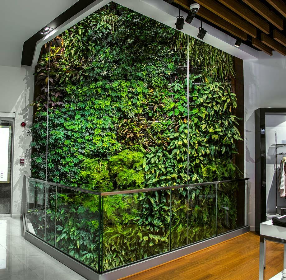 mur vegetal interieur teheran 015530600 1132 10082016 le paysagiste. Black Bedroom Furniture Sets. Home Design Ideas