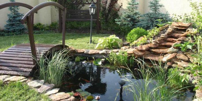 Installer un bassin harmonieux pour embellir le jardin