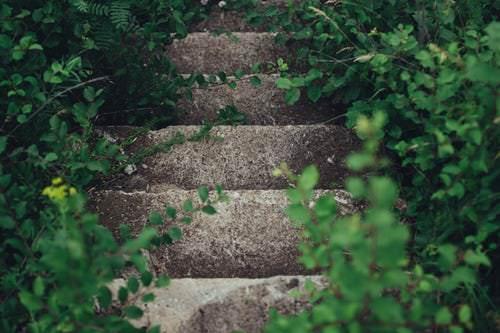 concevoir un jardin comment concevoir le jardin de vos r ves le paysagiste