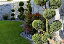 Découvrez toutes les possibilités pour embellir votre jardin