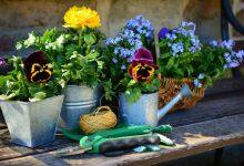 Nos 3 conseils pour faire la déco de son jardin soi-même
