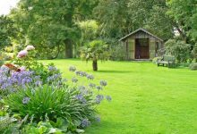 Entretien grand jardin : Facilitez-vous la vie avec un mini tracteur