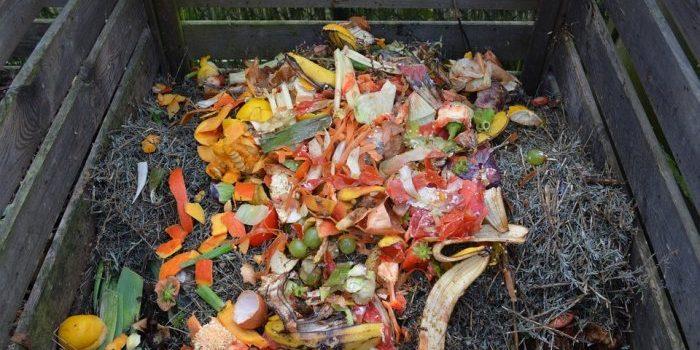Les 2 étapes pour fabriquer son compost maison