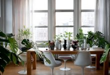 10 idées originales pour décorer la maison avec des plantes d'intérieur