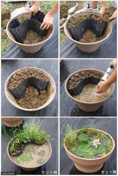 Mini bassin en pot