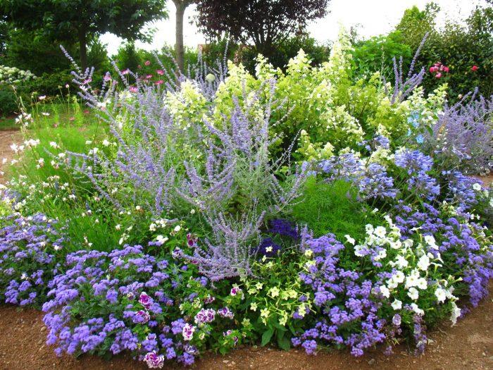 avoir un jardin fleuri toute l'année
