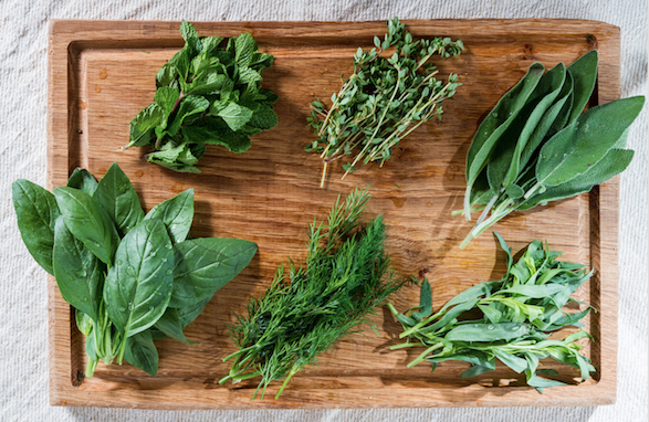 types d'herbes aromatiques à avoir chez soi