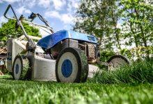 6 types de tondeuse pour entretenir votre pelouse