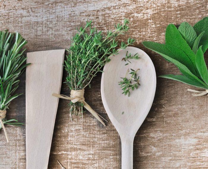 les matériaux pour la fabrication de notre mur végétale