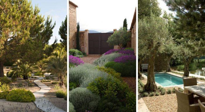 Les types de plantes qui caractérisent un jardin sec méditerranéen