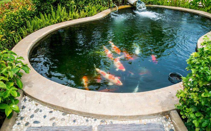Travailler un bassin profond