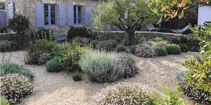Comment aménager un jardin sec chez soi ?