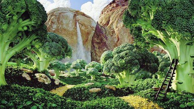 La tendance aux forêts comestibles