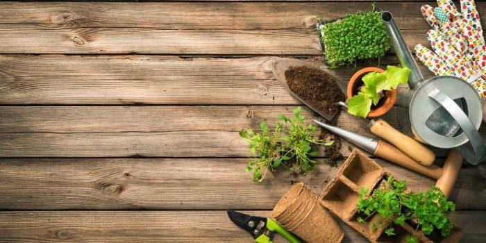 Outils de jardin: comment bien les protéger pour l'hiver?