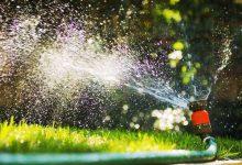 Nos meilleurs conseils pour avoir une belle pelouse